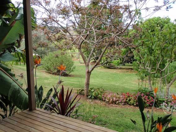 Artist Residency New Zealand
