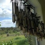 Art Residencies NZ